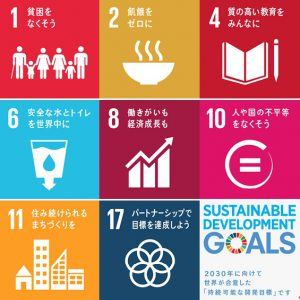 Sdgs Goals of SDGs related to persons with disabilities