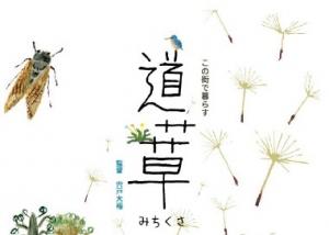 映画「道草」ポスターのタイトル部分
