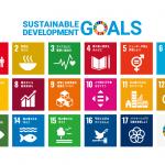 持続可能な開発目標(SDGs)に対するDPIの取り組み