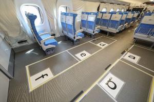 座席と車いす用スペース(6席分)の様子