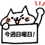 いよいよ今週末となりました!<br/>5月30日(日)「第36回DPI日本会議全国集会」オンラインで開催します!