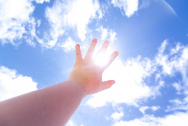 光にかざした手